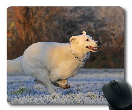 Custom Mouse pad,Dogs Puppies Pets Mouse Pads,Swiss Shepherd Dog Dog Race Frost Winter Cold,Dogs Gaming Mouse mat