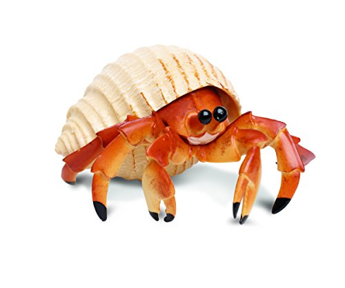 Safari Ltd  Incredible Creatures Hermit Crab