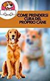 come prendersi cura del proprio cane: come prenderti cura della salute del tuo cane