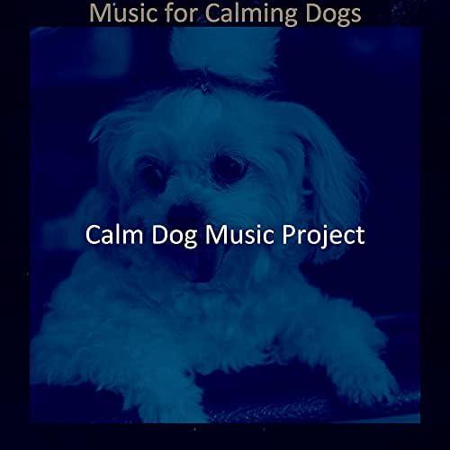 Calm Dog Music Project