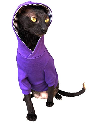 Kotomoda Sphynx - Felpa con cappuccio per gatto senza peli,...