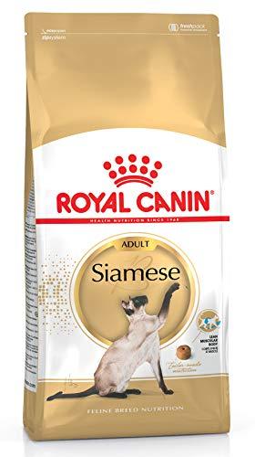 Royal Canin 55193 Siamese 10 kg - Katzenfutter