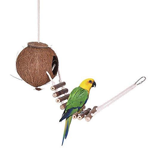 iBâstte Cama Nido Natural de Concha de Coco para pájaros para Loro,Nido de pájaro,Hámster Nido de cria con Escalera de Escalada