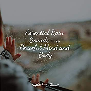 Essential Rain Sounds - a Peaceful Mind and Body