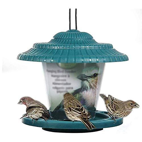KSTORE Vogel-Zufuhren Hängen Wild Bird Feeder für kleine Vögel Feeder Für Niger Seed Feeder Mealworm FeederThe Garten Vogelfutter Feeder Vogelfutterlagerung,Grün