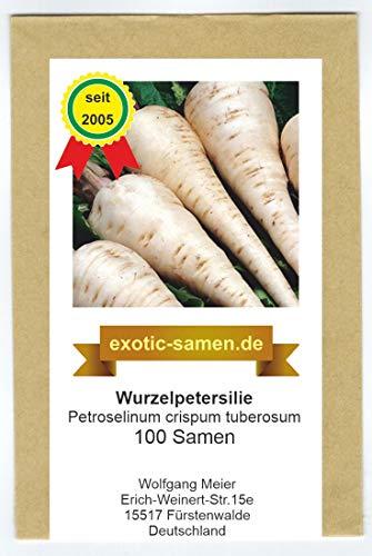 Petersilienwurzel, Wurzelpetersilie (100 Samen)