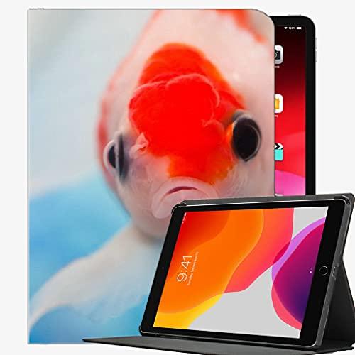 para iPad Pro 11 Pulgadas Caso 2021 2020 2018 Funda, Ojos de Pescado Natación Caja bajo el Agua Cubierta de Concha Delgada para iPad Pro 11 Pulgadas