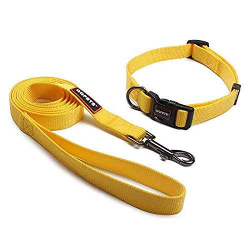 Dog Collar and Leash Set, Adjustable Personalized Basic Collars Training Walking for Puppy Medium or Large Dogs Training Walking with Padded Handle (Medium, Yellow)