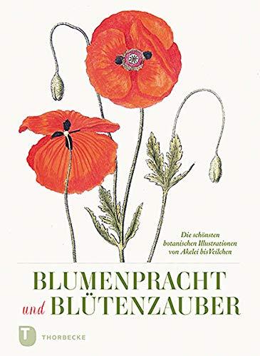 Blumenpracht und Blütenzauber: Die...