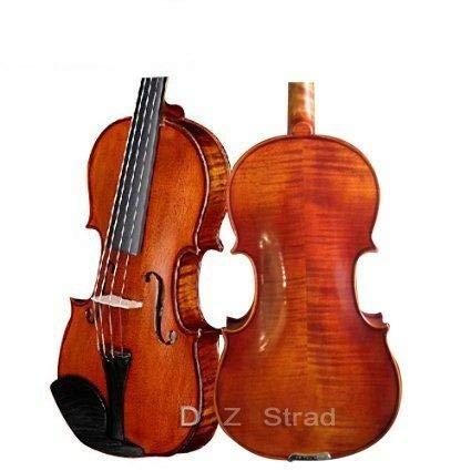 "D Z Strad viola Model 101 with Strings, Case, Bow, Shoulder Rest, and Rosin (16"" - Size)"