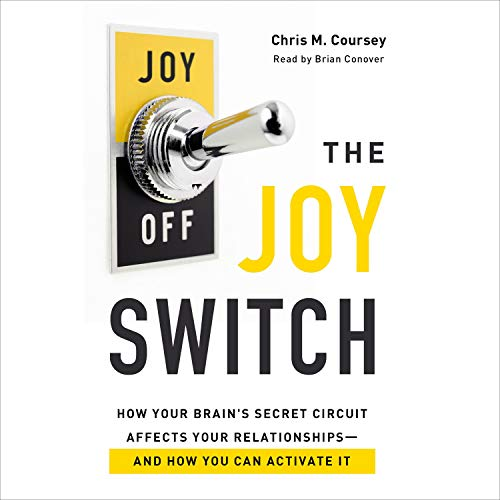 The Joy Switch cover art