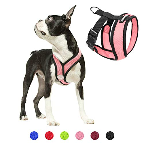 Gooby Dog Harness - Pink, Medium - Comfort X Head-in Small Dog Harness with Patented Choke-Free X Frame - Perfect on The Go No Pull Harness for Small Dogs or Cat Harness