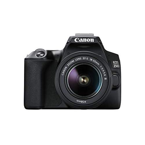 Canon EOS 250D (24,1 Megapixel, display orientabile da 7,7 cm (3 pollici), sensore APS-C, 4K, Full HD, DIGIC 8, WLAN, Bluetooth), Nero, con obiettivo EF-S 18-55 mm f/3.5-5.6 III, nero