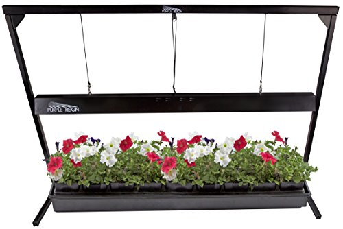 Apollo Horticulture Purple Reign 4' Foot 54W 6400K T5 Grow Light System for Plant Growing