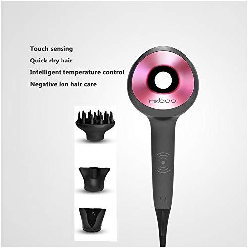 Haartrockner Haartrockner 2000W intelligente Temperaturregelung Touch-Steuerung intelligente blattlos Haartrockner (Color : Gray)