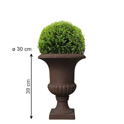 Chemin_de_Camp Vase Medicis aus Zementfasern, braun, Durchmesser 30 cm