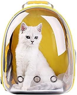 Kattryggsäck med transparent framsida för transport av katter..