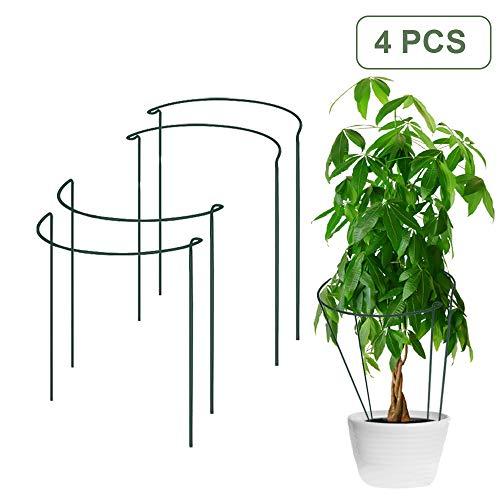 4 Piezas Garden Support Stakes Anillos de Soporte para Plantas, Estante de Escalada para la siembra de clemátide de ratán de jardín, Recta y sujeta firmemente Plantas Pesadas - H16 x W9.8