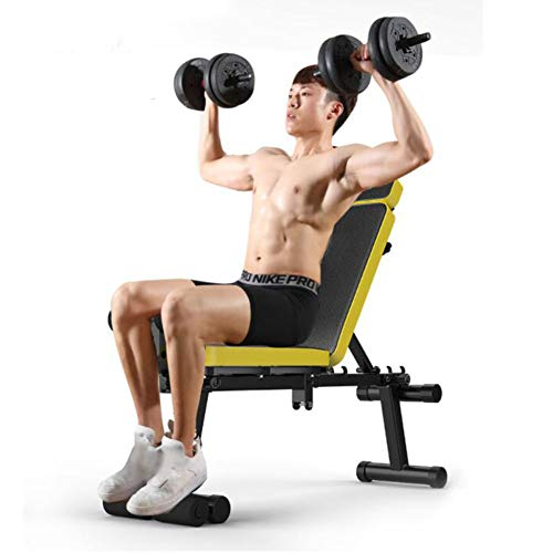 HATHOR-23-Adjustable-Weight-Bench-Foldable-InclineDecline-Bench-Press-for-Lifting-Sit-Up-Home-Gym-and-Full-Body-WorkoutMaximum-Bearing-about-850-Lbs