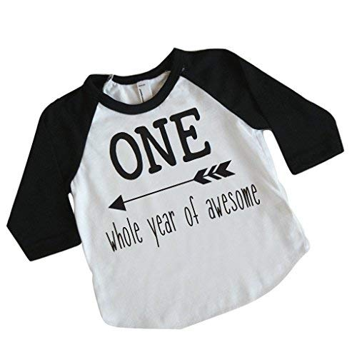 f315e6cea Boy First Birthday Shirt, One Whole Year of Awesome (12-18 Months)