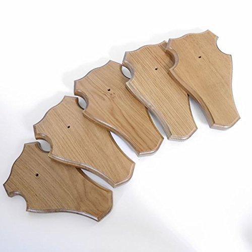 GTK - Gewei & Trofee kroomhout 5 stuks trofeeplaat REH stomp (groot voor hele neus), medium bruin