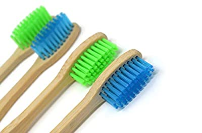 HUGE 2-DAY SALE!! Bambloo and Green: Nature's Clean! Bamboo Vegan Toothbrush - Biodegradable Wood Handle | Organic toothbrushes | Natural Product for Eco Friendly Hygiene - by Frescor