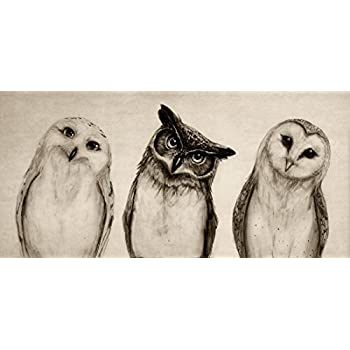 Shakaka The Owls 3 Canvas Wall Art for Home Decoration Canvas Print - 16x 12