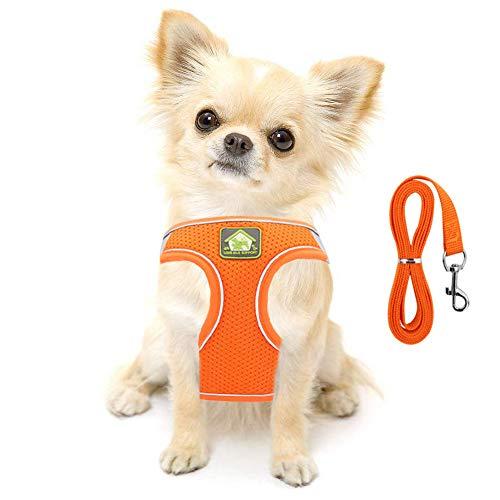 FeiLuo Hundegeschirr mit Leine für Hunde, Weich Mesh Brustgeschirr für Mittlere und Kleine Hunde/Katzen, Verstellbare Reflektierende Atmungsaktive Welpengeschirr Puppia Vest Harness