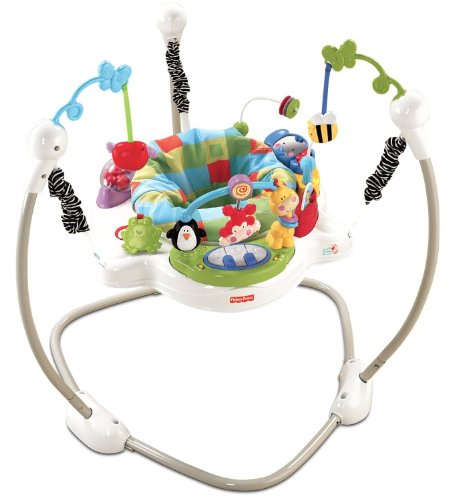Fisher Price Discover and N Grow Jungle Piano Jumper Jumperoo Bouncer Gym