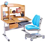 N/Z Living Equipment Children Desk and Chair Set Multi Functional Childrens Study Desk Chair Height Adjustable Study Table Desk Kids (Color : Blue)