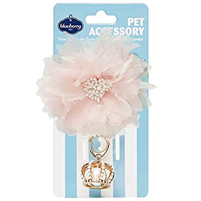 Blueberry Pet 2020 New Princess-to-be Pet Accessory Set of Flower Décor and Crown Pendant, Pack of 2 Accessories for Dogs & Cats