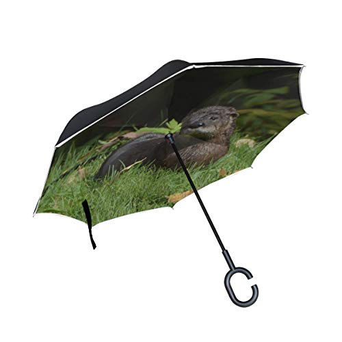Double Layer Inverted Folding Umbrella Chair Netter lustiger Otter, der im Fluss schwimmt Tragbarer umgekehrter Umbrella Compact Reverse Umbrella Winddichter UV-Schutz für Regen mit C-förmigem Griff