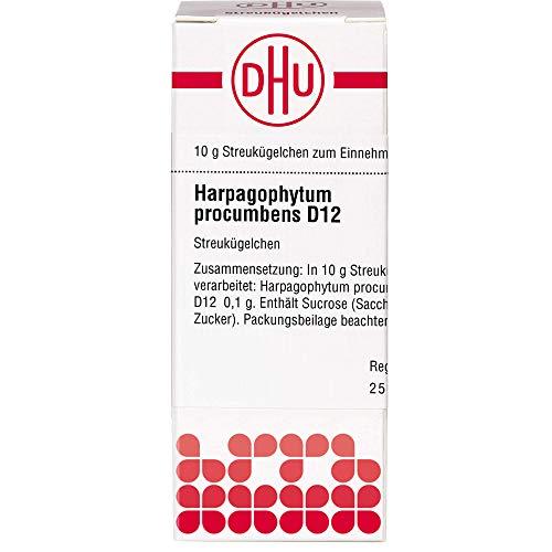 DHU Harpagophytum procumbens D12 Globuli, 10 g Globuli