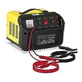 MSW S-CHARGER-30A.4 Caricabatterie per Auto Mantenitore di Carica (12/24V, A 20-250 Ah, 230 V, 0,65 kW, Display analogico, per batterie al Piombo Acido, Grigio)