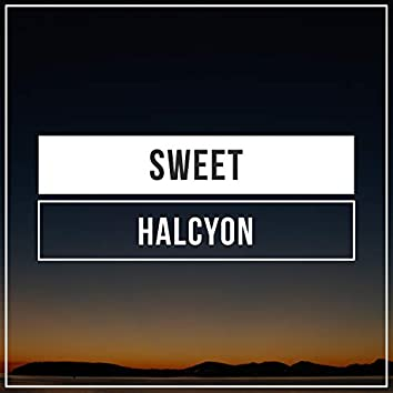 # 1 Album: Sweet Halcyon