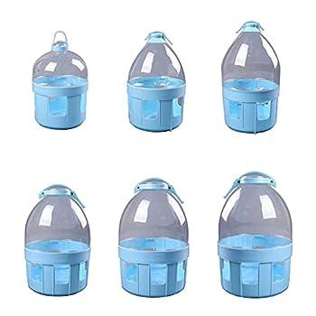 Abreuvoir en plastique pour oiseaux, pigeons, mangeoire à eau automatique durable pour colombes, pigeons 6 tailles