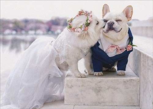 Avanti Press Dogs on Marble Steps Cute French Bulldog Wedding Congratulations Card