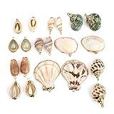 obsede, 20 ciondoli con conchiglie marine naturali miste placcate oro, per gioielli fai da te, artigianato