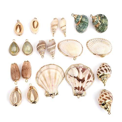 OBSEDE - 20 colgantes de concha de mar con concha de concha de concha de concha de concha de mar natural chapada en oro para bricolaje, joyería, manualidades, accesorios