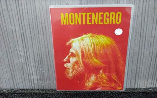 OSWALDO MONTENEGRO - QUEBRA-CABEÇA ELETRICO (DVD)