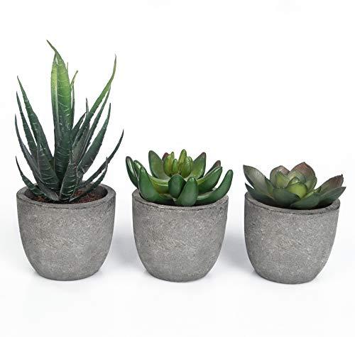 YHmall 3 PCS Plantes Artificielles Dans des Pots, Mini Fausses Plantes Succulentes Artificielles Série en Pot Pour Intérieur/Extérieur/Salon/Bureau (Gris) (Gris)
