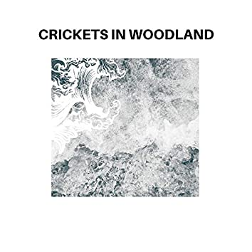 Crickets in Woodland