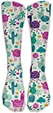 iuitt7rtree s and Cactus Soft Casual Fashionable Long Knee High Socks Stockings size