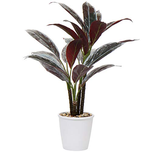 24.8' Artificial Cordyline Fruticosa Plant Decorative Indoor Tropical Fake Plants in White Pot for Home or Office