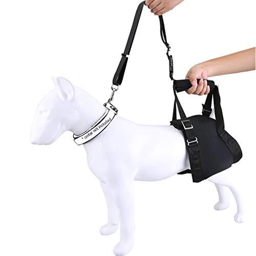 Arnés Perro Portátil de Ayuda para Levantar Mascotas | Arnés para Perros Trasero de Correa de Soporte de Cadera | Arnés de Asistencia (XL, Negro)