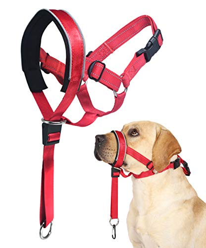 Head Collar, Head Halter Collar for Dogs, Padded Headcollar to Stop Pulling for Small Medium Large Dogs