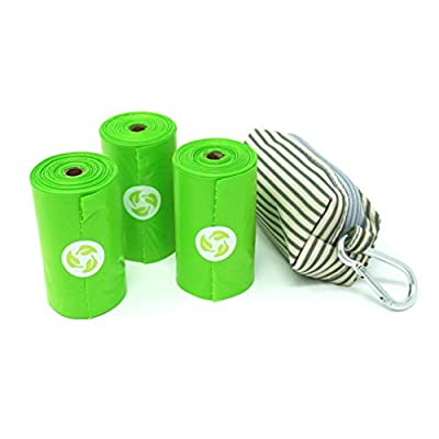Earth Friendly Diaper Baggy Dispenser with 80 OXO-Degradable Bags with Cardboard Recyclable Core (Striped)