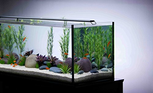 Current USA Satellite Freshwater LED Plus Light for Aquarium, 24 to 36-Inch