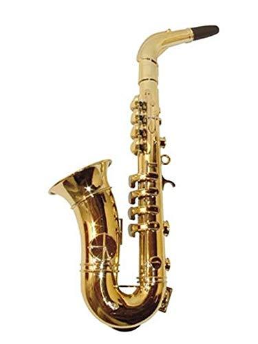 DISBACANAL Saxo 8 Notas
