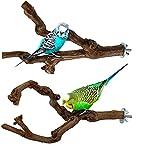 ADLOASHLOU 2 Soportes para Percha De Loro, Soporte para Pájaros, Palo De UVA Salvaje Natural, Pata De Molienda, Escalada, Accesorios para Jaulas De Pie, Ramas De Juguete para Periquitos, Agapornis